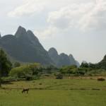 Environs de Yangshuo sur la rivière Li