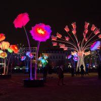 Lyon - fête des lumières 2017