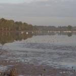 étang Orcet